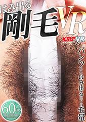 はみ出る剛毛VR